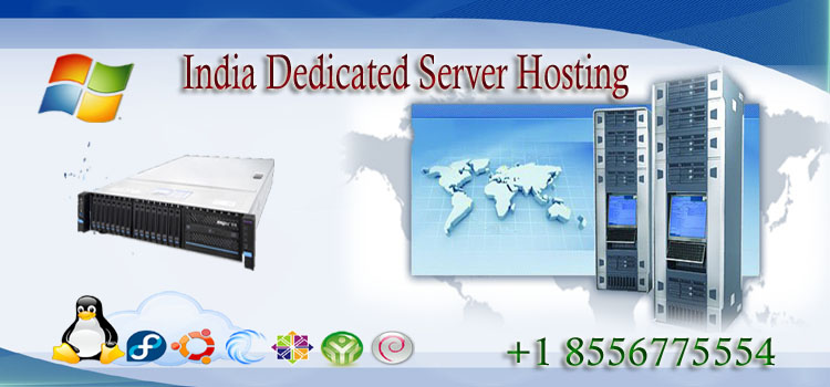 Perfect Indian Dedicated Servers for projects with medium and big amounts of traffic
